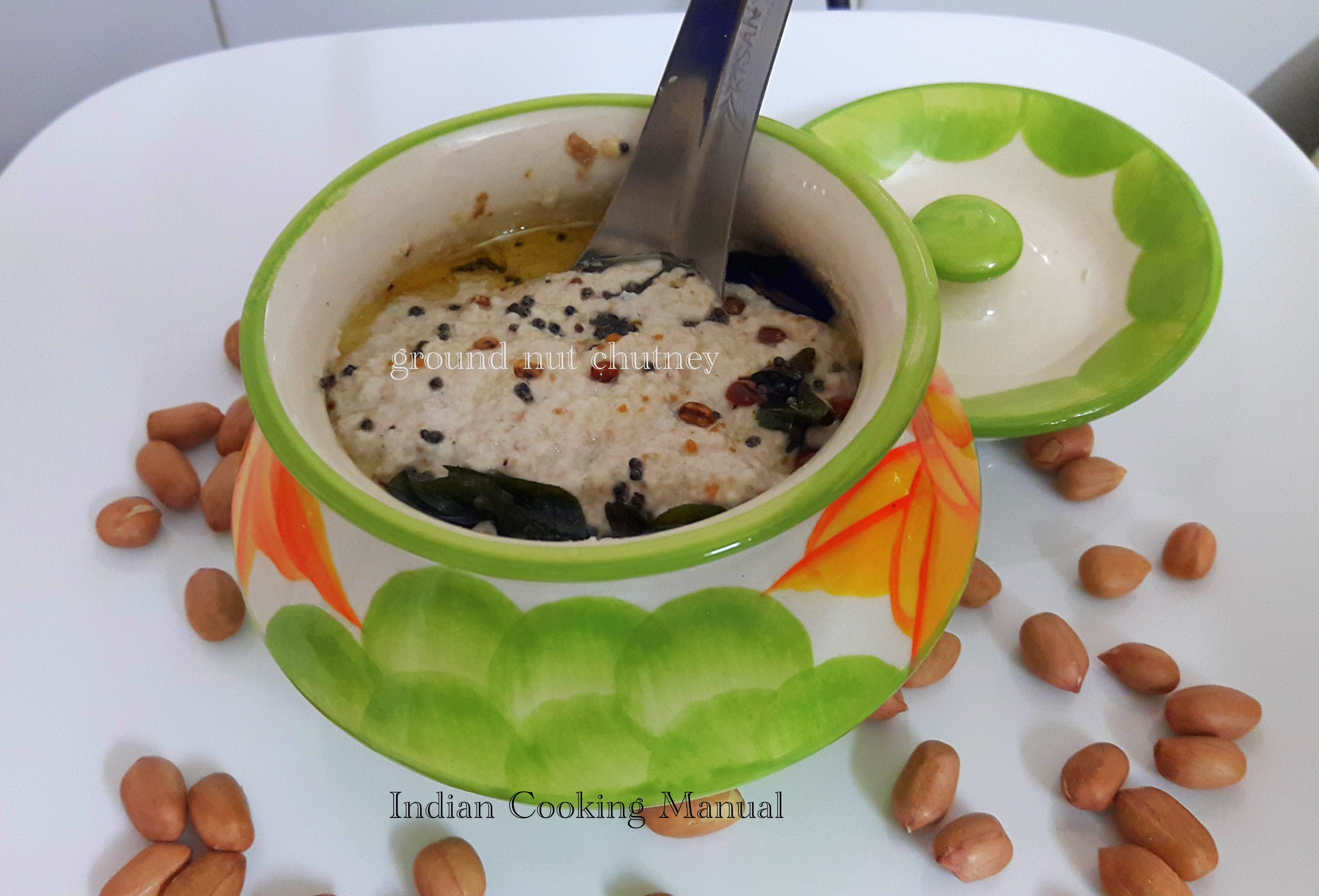 Moongphali ki Chutney (raw peanut dip)